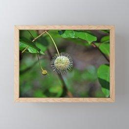Riversong Framed Mini Art Print
