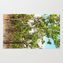 Beautiful forest regrowth Rug
