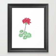 Wembley Gem Red Flower Framed Art Print