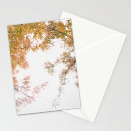 Autumn Origami Stationery Cards