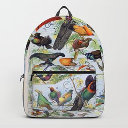 Adolphe Millot - Oiseaux B - French vintage poster Backpack