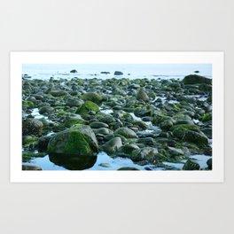 Seashore Stones Art Print