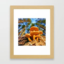 Blackbird Mushrooms Framed Art Print