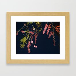 Flowers in the Sky 2 Framed Art Print