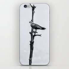 Lonely Perch iPhone & iPod Skin
