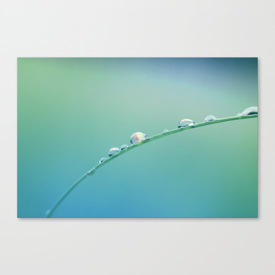 Rainbow in Every Drop Canvas Print