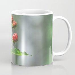 Blackberry dressed in red Coffee Mug