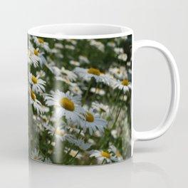 Siberian chrysanthemum Coffee Mug