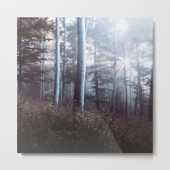 Forest Trees Sunrise Metal Print