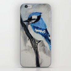 Blue Jay Wild Bird Acrylic Painting iPhone & iPod Skin
