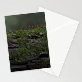 Almost Invisible  Stationery Cards