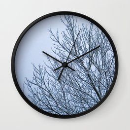 Frozen Nature Wall Clock