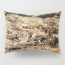Little Pedernales Flowing Pillow Sham