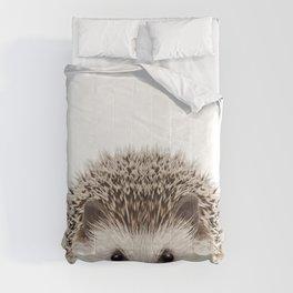 Baby Hedgehog Comforters
