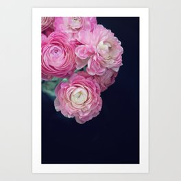 pink on black Art Print