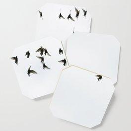 Birds Coaster