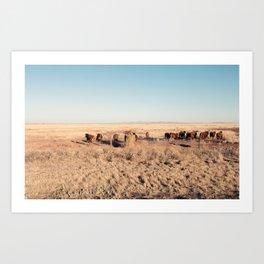 West Texas Stampede Art Print