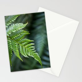 Fern Hollow Stationery Cards