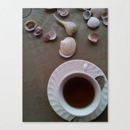 Tea Shells Canvas Print