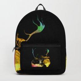 CARABOU I-A Backpack