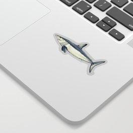 Mako shark (Isurus oxyrinchus) Sticker