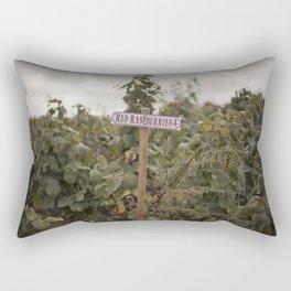 Red Rasberries Rectangular Pillow