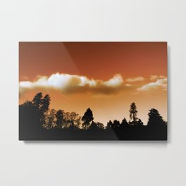 Silhouetted trees Metal Print