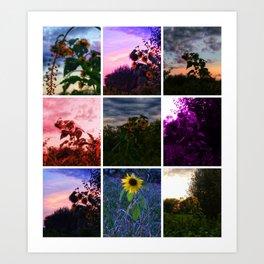 Sunflower Collage Art Print