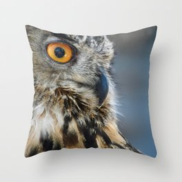 Eye of the Wise Throw Pillow