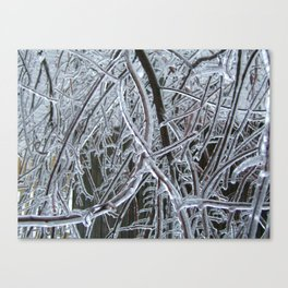 Twinkle Canvas Print