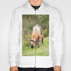 The Endangered Takin Hoody