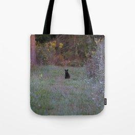 Autumn Black Cat Yellow Eyes Tote Bag