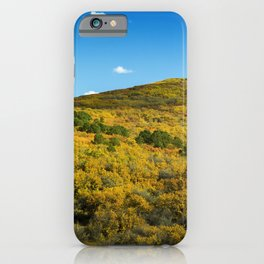 Painted Hills of Gunnison National Park iPhone Case