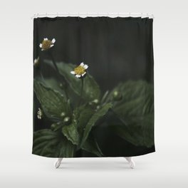 Botanical Still Life Chamomile Shower Curtain