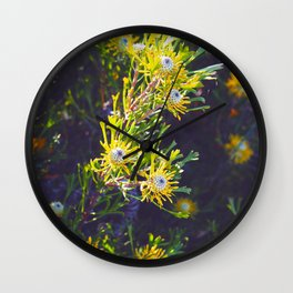 Australian Spring Wall Clock