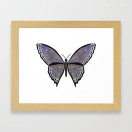 moss dagmara (Dagmarae meos) Framed Art Print