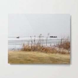 Four Otters Metal Print