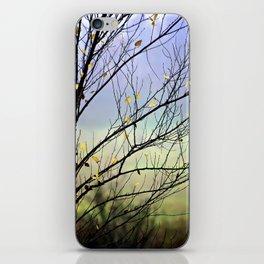 Riverbirch iPhone Skin
