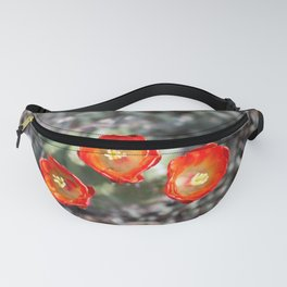 Joshua Tree Blooming Cactus Fanny Pack