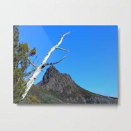 Up at Cradle Mountain Metal Print
