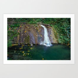 Autumn leaves in the waterfall Art Print
