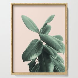 Ficus Elastica #25 #SummerVibes #foliage #decor #art #society6 Serving Tray