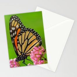 Monarch Butterfly on Pink Flowers 1 Stationery Cards