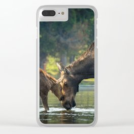 Love between Mother And Calf Moose Clear iPhone Case