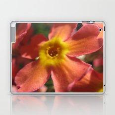 RedYellowOrange Laptop & iPad Skin