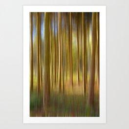 Concept nature : Magic woods Art Print
