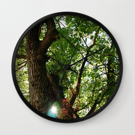 Virginia Forest with Light Shining Through Wall Clock