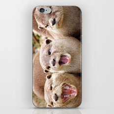 Otter Sequence iPhone & iPod Skin