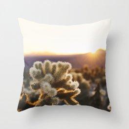 Daybreak at the Cholla Cactus Garden Throw Pillow