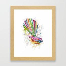 Sketchy Fantail Framed Art Print